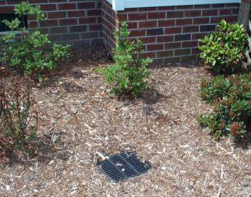Morris nursery landscaping irrigation contractor for Landscape drainage design